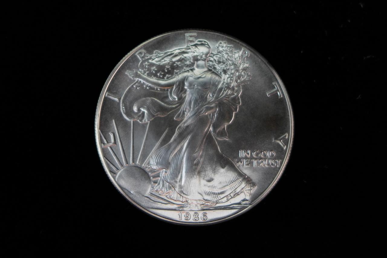 1 Troy Ounce Silver Dollar Value